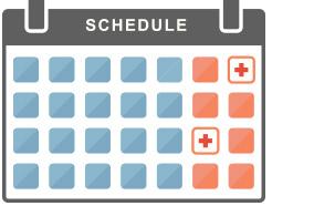 step_schedule